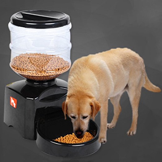 Now You Won't Have To Worry About Your Pet Missing Out On Their Meal...